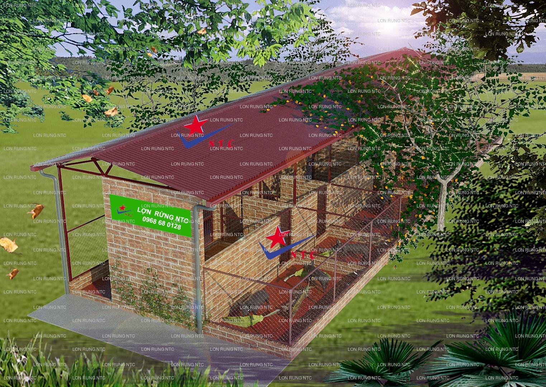 Hướng dẫn mô hình nuôi lợn rừng đạt năng xuất cao